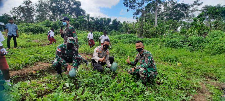 TNI-Polri dan Warga Tanam Sayuran di Bupul Merauke